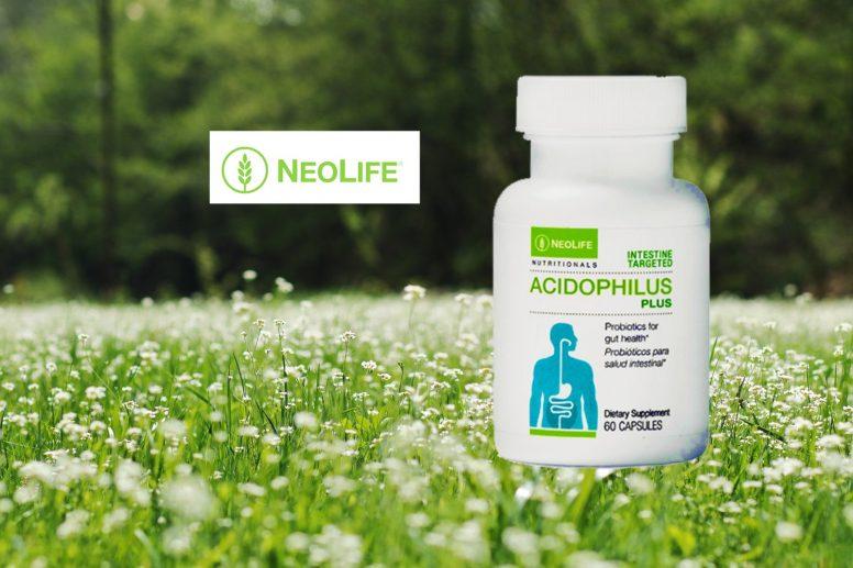 neolife acidophilus plus